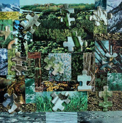 Puzzled Landscape